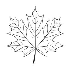 Кленовый лист 2 - шаблон трафарет для 3Д ручки